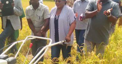 Visite dela Direction Régionale de l'Agriculture et des Aménagements Hydro-agricoles de la région du centre-oues,vendredi 18 octobre 2019 à Youloupo, village situer a environ 27km de Didyr .